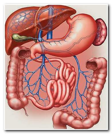 Лечение баней пищеварительной системы
