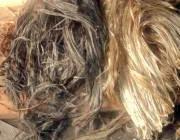 Конопатка сруба - джутовое волокно